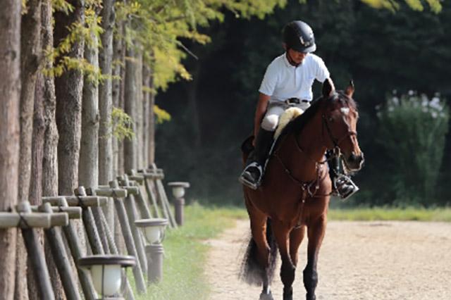 【乗馬】馬との触れ合いで磨ける力。経営者の方に乗馬をおすすめする理由とは