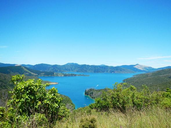 夏を満喫できる富士五湖周辺のトレッキングエリア