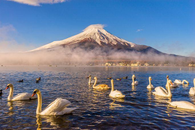 富士の借景だけじゃない、山中湖周辺の一押し温泉