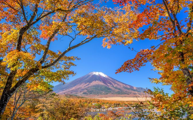 【ハイキング】秋の富士山麓・山中湖畔で魅力に触れる徒歩の旅