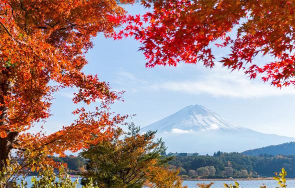 【山中湖】今年の秋も風光明媚な富士山麓で紅葉狩り+アクティビティ