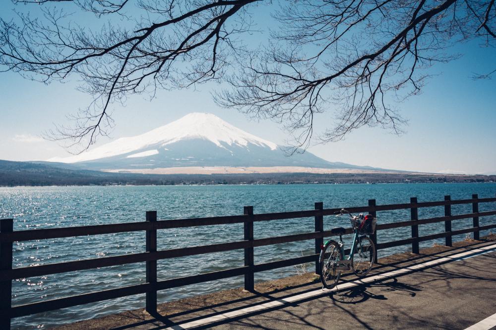 心地よい初夏は自転車で山中湖畔を1周してみよう