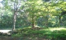 2011年新分譲地第5弾「ふれあいの森」販売開始。
