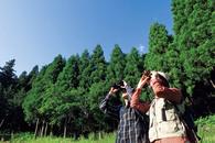 春のバードウォッチングと 山菜・ほうとうパーティ (北富士演習場+ふじさん牧場)