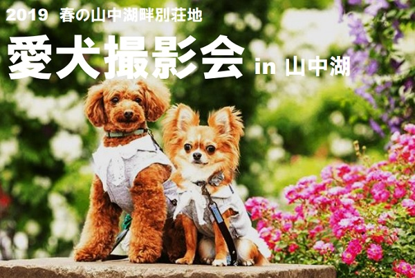 【※4/25追記/満員御礼】ドッグフォトグラファーによる愛犬撮影会