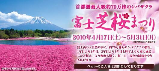 富士芝桜まつりのご案内