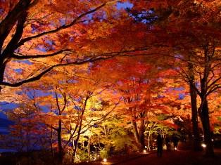 山中湖 秋のイベント情報 ~紅葉まつり~
